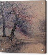 Marshell Creek Acrylic Print
