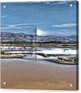 Marshlands Acrylic Print