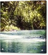 Martha Brae River Acrylic Print