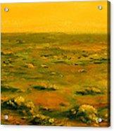 Martian Desert Landscape Art  Acrylic Print