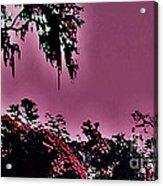 Martian Gardens Acrylic Print