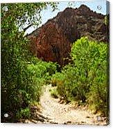 Martinez Canyon Acrylic Print