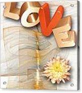 Marucii 277-07-13 Love Acrylic Print