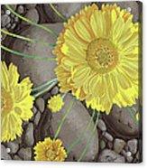 Mary Ann Acrylic Print