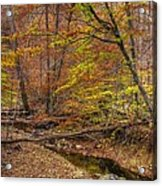Maryland Country Roads - Autumn Colorfest No. 7 - Catoctin Mountains Frederick County Md Acrylic Print