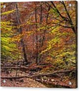 Maryland Country Roads - Autumn Colorfest No. 8 - Catoctin Mountains Frederick County Md Acrylic Print