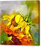 Marys Garden Acrylic Print