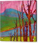 Mary's Peak 9 Acrylic Print