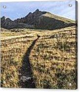 Matterhorn Peak - Colorado Acrylic Print