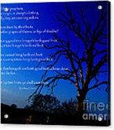 Matthew 7 15-20 Acrylic Print