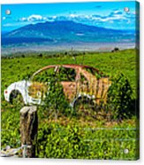 Maui Upcountry Rusted Car Acrylic Print