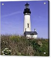 May At The Lighthouse Acrylic Print