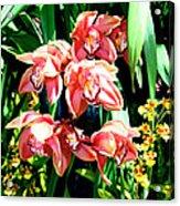 Joy Orchids Acrylic Print