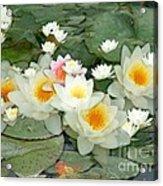 May Pond Acrylic Print