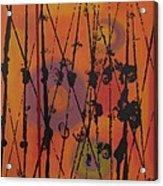 Maya 1 Acrylic Print