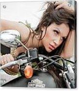 Maya And Harley Acrylic Print