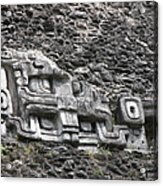 Mayan Hieroglyphics Acrylic Print