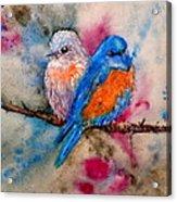Maybe She's A Bluebird Acrylic Print