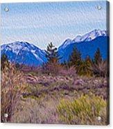 Mazama From Wolf Creek Acrylic Print