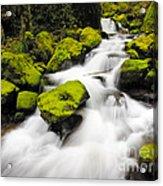 Mccord Creek, Columbia Gorge Acrylic Print