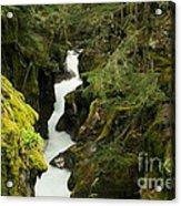 Mcdonald Creek Cateracts Acrylic Print