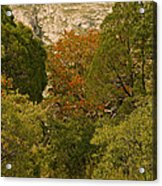 Mckittrick Canyon Trail Acrylic Print