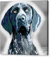 Me Good Dog Acrylic Print by Jo Collins