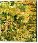 Meadow After Van Gogh Acrylic Print