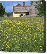 Meadow Cottage Acrylic Print by Stephen Norris