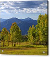 Meadow Highlights Acrylic Print