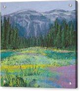 Meadow In The Cascades Acrylic Print