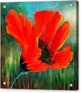 Meadow Light Acrylic Print