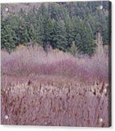 Meadow View Acrylic Print