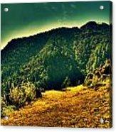 Meadows 2 Acrylic Print