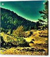 Meadows Acrylic Print