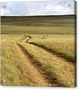 Meandering Path Through The Hills Of Acrylic Print