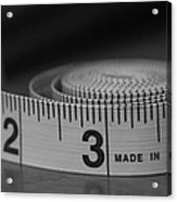 Measuring Up  Acrylic Print