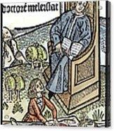Medical Teaching, 1487 Acrylic Print