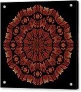 Medicine Wheel Dragonspur Fractal K12-3 Acrylic Print