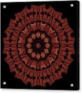 Medicine Wheel Dragonspur K12-5 Acrylic Print