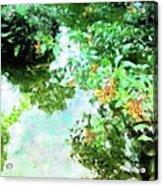 Meditation Pond Acrylic Print