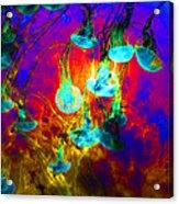 Medusas On Fire 5d24939 Acrylic Print by Wingsdomain Art and Photography