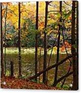 Meduxnekeag River 4 Acrylic Print