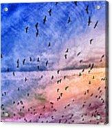 Meet Me Halfway Across The Sky 2 Acrylic Print by Angelina Vick