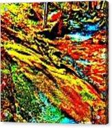 Mellow Yellow 61 Acrylic Print