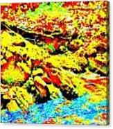 Mellow Yellow 75 Acrylic Print