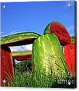 Melonhenge Acrylic Print