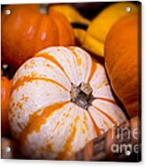 Melons Acrylic Print by Nelson Watkins