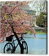 Memorial Bicycle Acrylic Print
