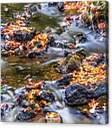 Memorial Falls Iv Acrylic Print
